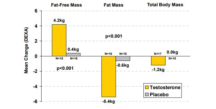 testosterón a úbytok tuku