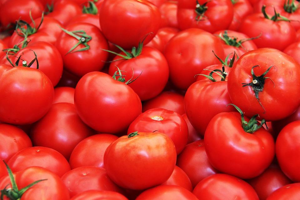 paradajky, zdroj lykopénu