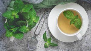 mätový čaj ako afrodiziakum