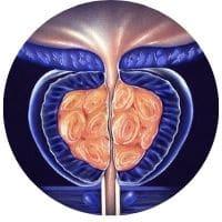 doplnky pre zdravie prostaty